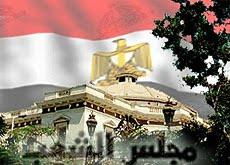 انتخابات مجلس الشعب 2010