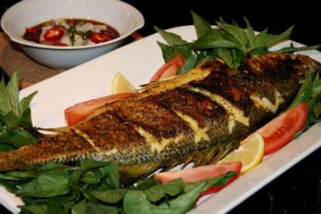 تناول الأسماك يقلل خطرالإصابة بسرطان القولون