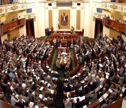نتيجة انتخابات مجلس الشعب 2010
